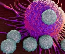 قاتل للخلايا السرطانية... علماء الوراثة يختبرون فيروسا تم إنشاؤه لانبثاث الأورام