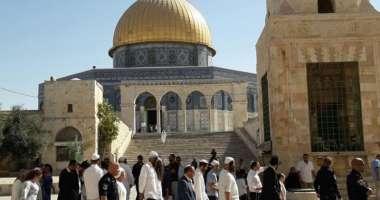 103 مستوطنين يقتحمون باحات المسجد الأقصى