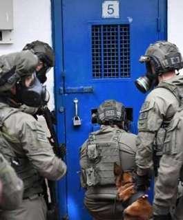 """نادي الأسير: إدارة سجن """"ريمون"""" تواصل تصعيد إجراءاتها التّنكيلية بحقّ الأسرى"""