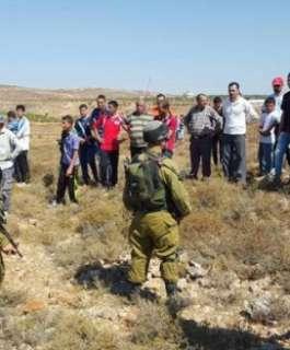 الاحتلال يمنع مزارعي قلقيلية من الوصول لأراضيهم المعزولة خلف الجدار