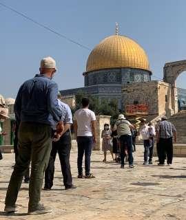 """عشرات المستوطنين يقتحمون """"الأقصى"""" بحماية الاحتلال"""