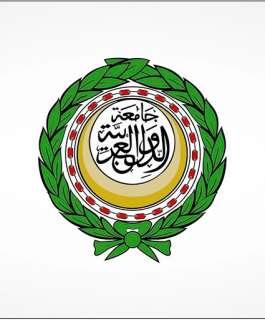 الجامعة العربية: خطاب الرئيس أمام الجمعية العامة خارطة طريق لإنهاء الاحتلال